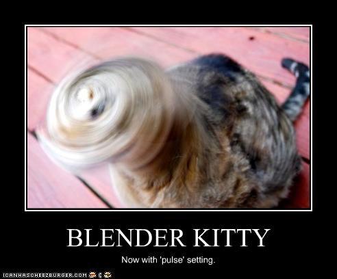 blender kitty 2